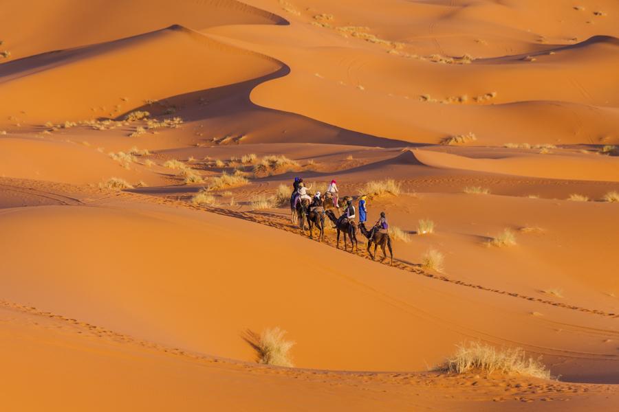 Marokko - Langs de rand van de woestijn
