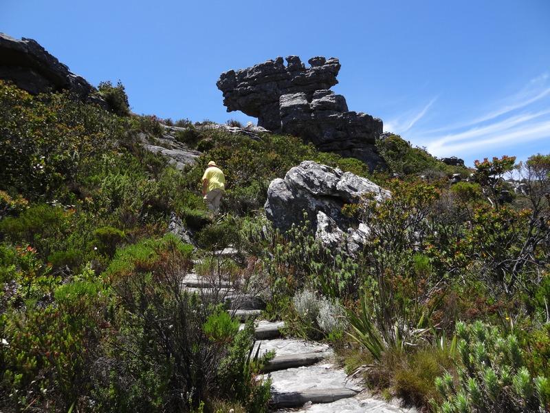 Wandelvakantie Zuid-Afrika - Kaapstad en de Tuinroute te voet in Kaapstad (West-Kaap, Zuid-Afrika)