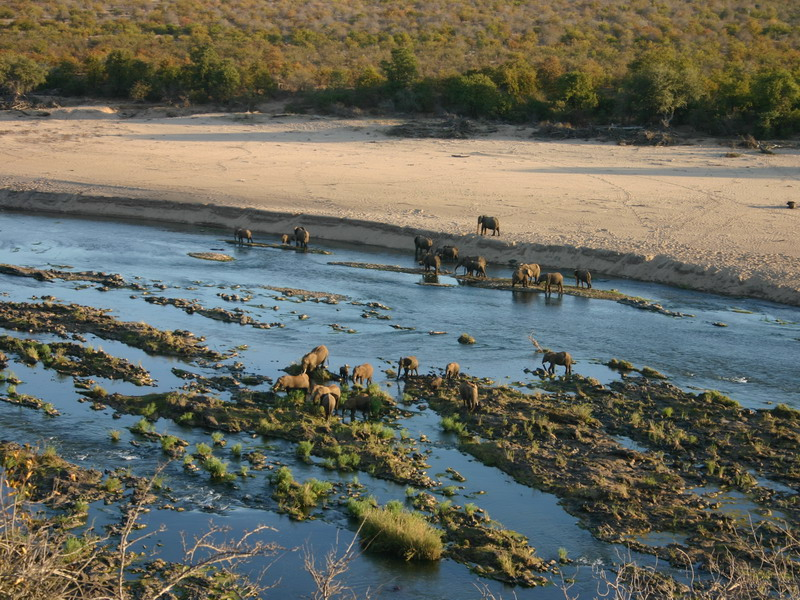 ZA_Kruger_-_waterplaats_Kruger_met__guided_game_drive_vanuit_Kurhula_Lodge_Ed_Maessen_WEB.jpg