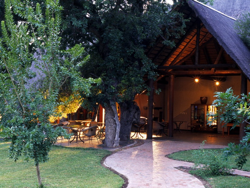 ZA_Ngala_Safari_Lodge_02_WEB.jpg