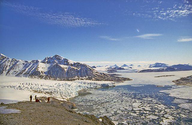 Spitsbergen Noord Spitsbergen IJsbeer Special