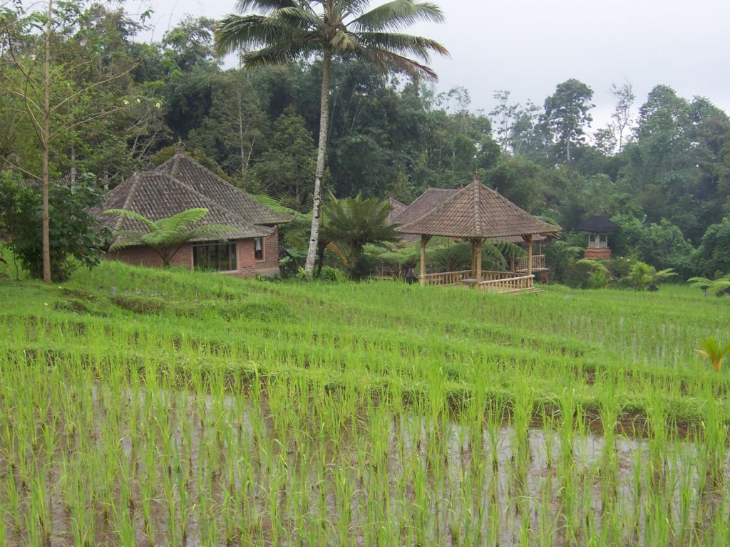 Prana_dewi_mountain_resort_location.jpg