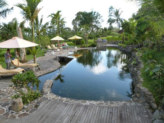 Prana_dewi_mountain_resort_pool.jpg