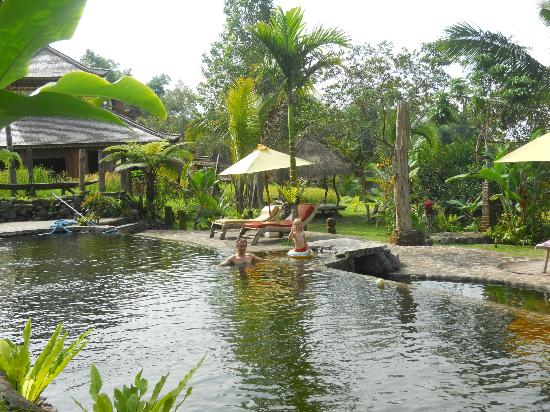 Prana_dewi_mountain_resort_pool2.jpg