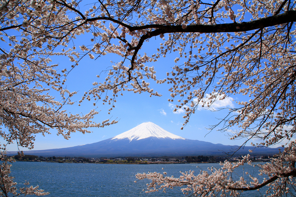 Reizen Japan