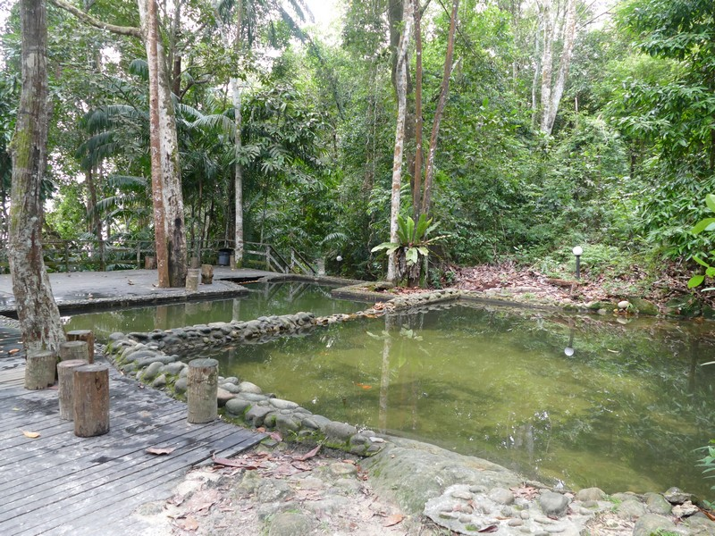 133_Permai_Ranforest_Resort_jungle_pool_Damai_Beach.jpg