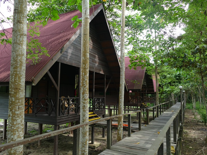 219_Bilit_Rainforest_Lodge1.jpg