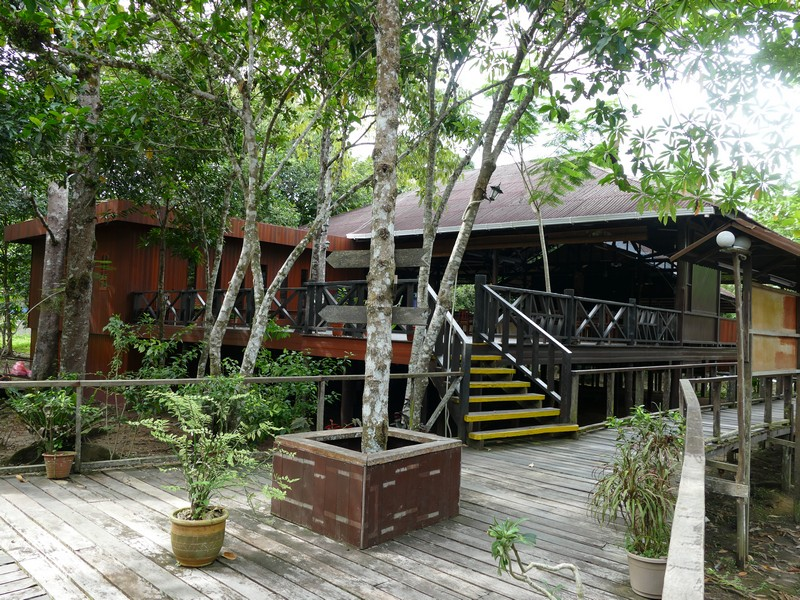 220_Bilit_Rainforest_Lodge1.jpg