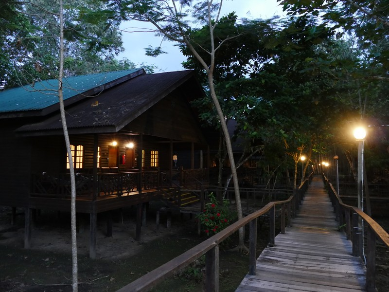 221_Bilit_Rainforest_Lodge1.jpg