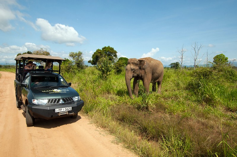 Sri Lanka - Avontuurlijke rondreis