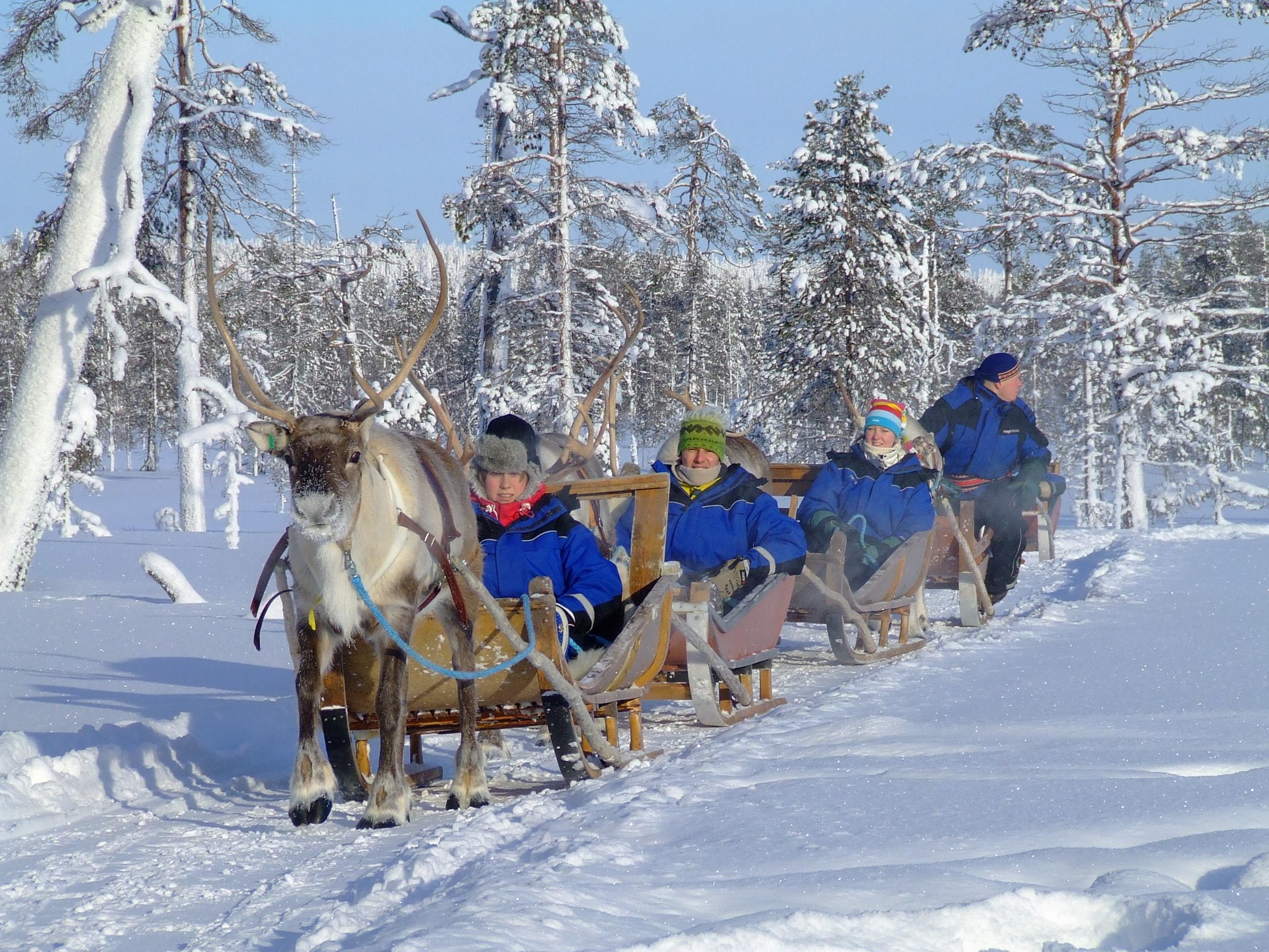 Finland - Wildernisweek Fins Lapland
