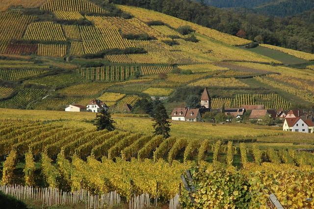 Wandelvakantie Frankrijk - Elzas in Eguisheim (Vogezen, Frankrijk)