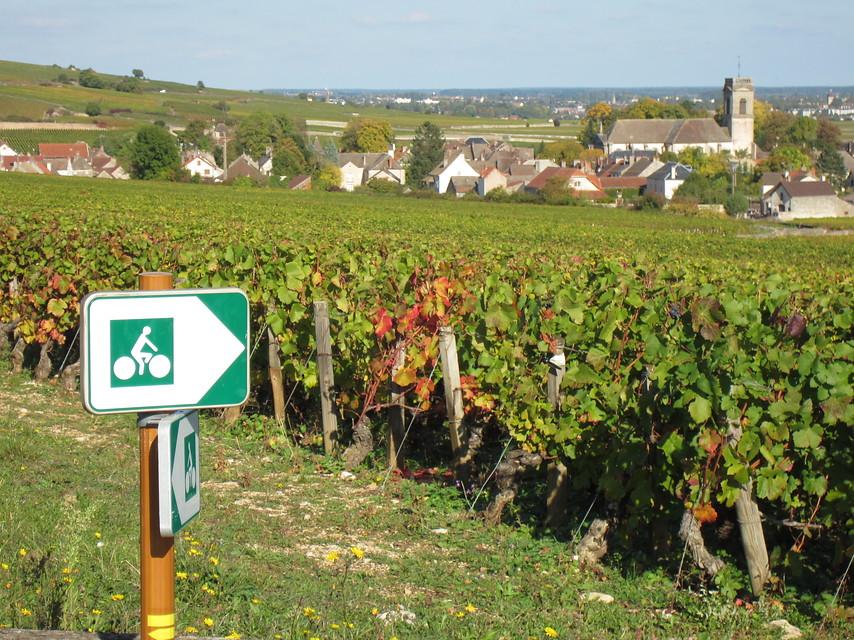 Fietsvakantie Frankrijk - Bourgogne in Dijon (Bourgogne, Frankrijk)