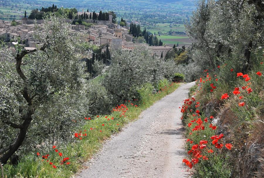 Italië - Umbrië zuid