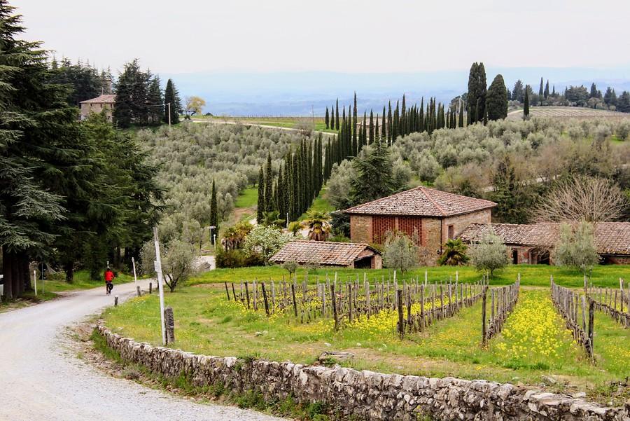 Italië - Toscane-Chianti