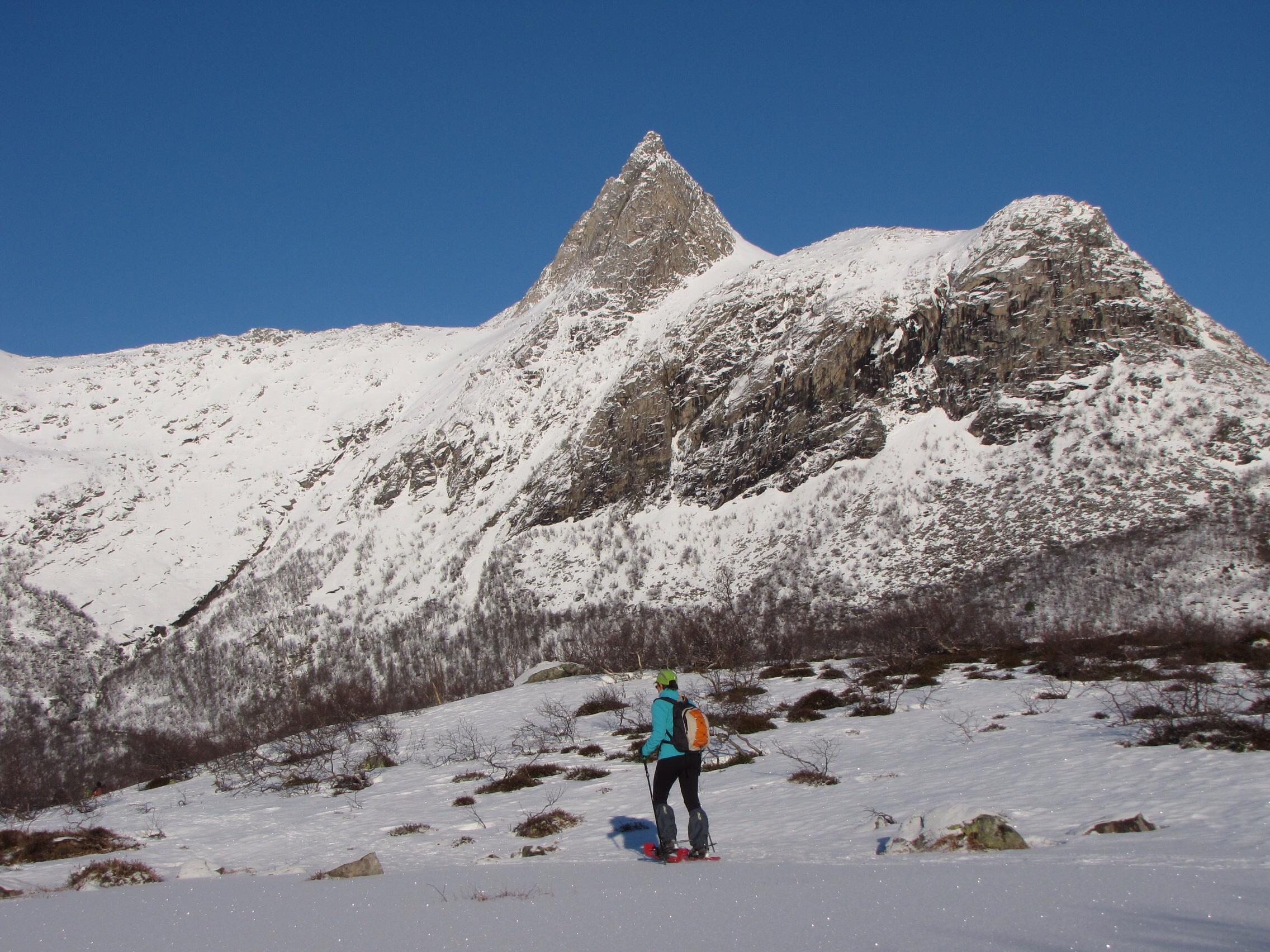 Noorwegen - Lofoten wintervakantie