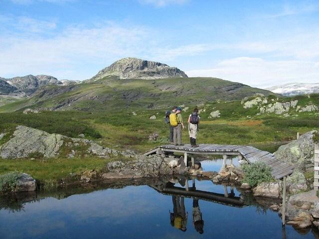 Noorwegen - Dovrefjell en Rondane