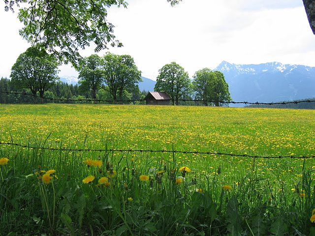 Sfeerimpressie Oostenrijk - Lungau