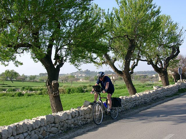 Online bestellen: Spanje - Mallorca