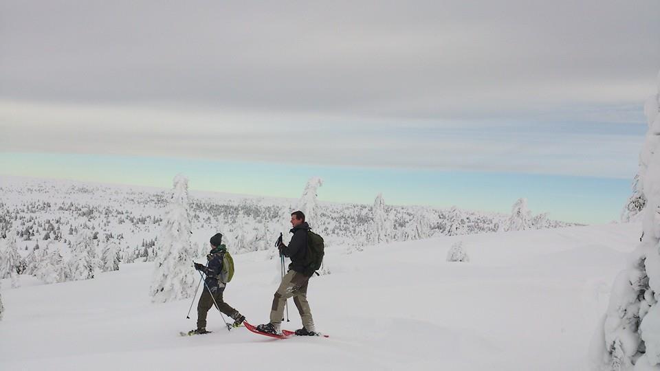 Zweden - Dalarna winterexperience
