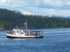orcacruise_in_johnstone_strait.jpg