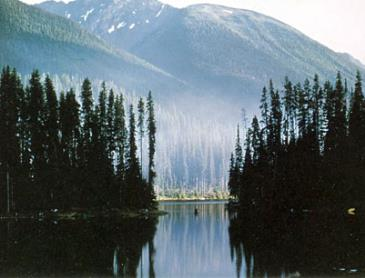 lightning_lake_in_manning_park.jpg