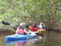 139_Mangrovetour_Ten_Thousand_Islands.jpg