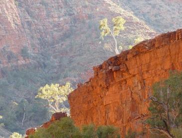 ormiston_gorge_west_macdonnel_np.jpg