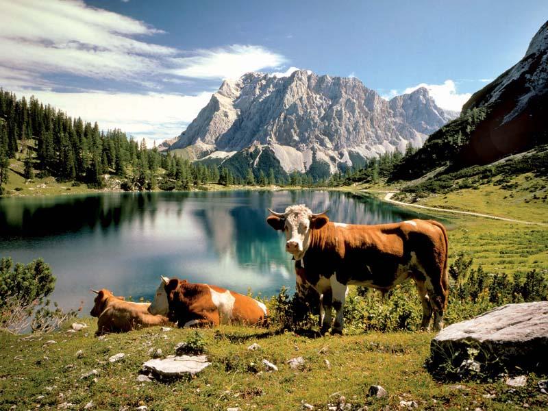 Duitsland Van Beieren naar Noord Tirol