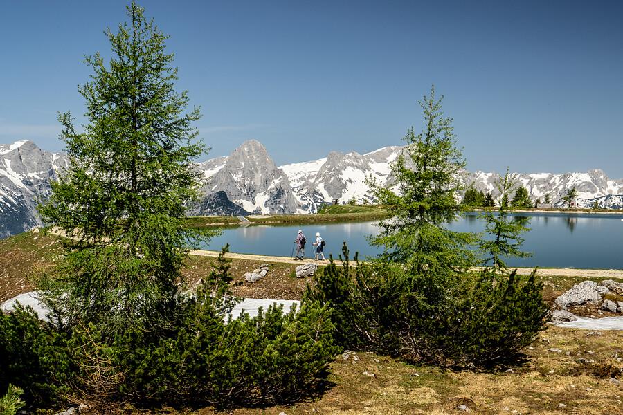 Oostenrijk - Oostenrijkse Alpen